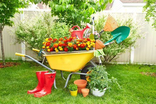 Lawn U0026 Garden Supplies